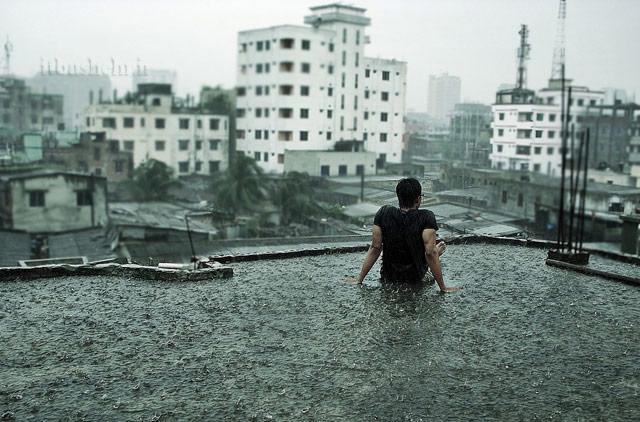 باران نشسته پشت بام