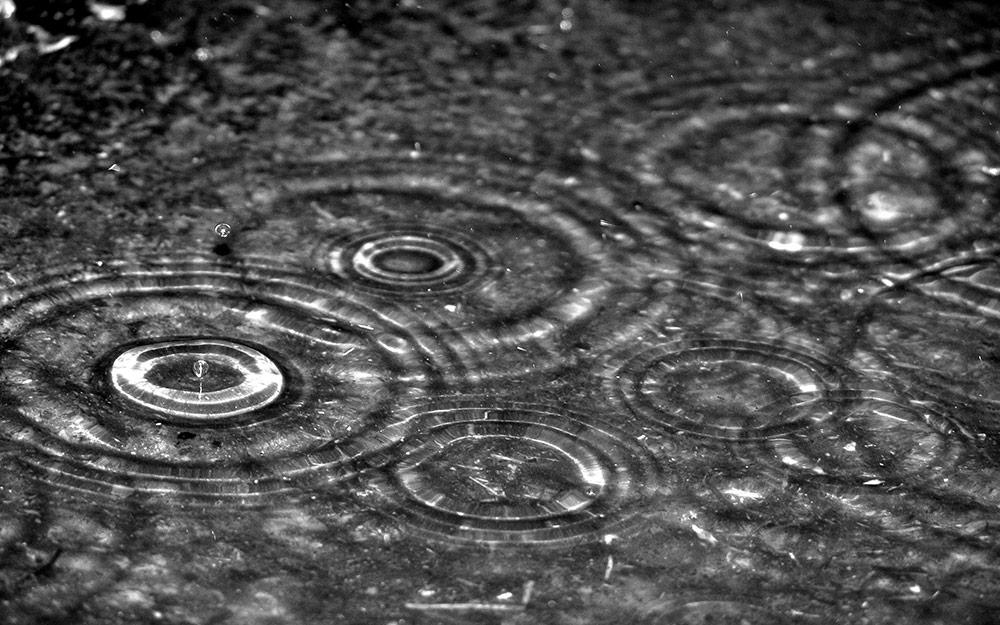 گهرهای زیبای باران