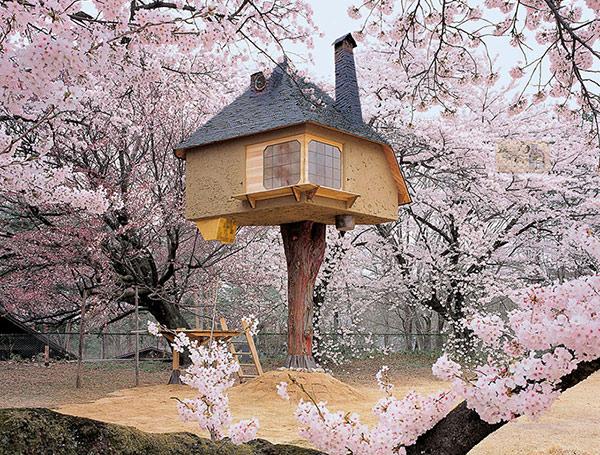 خانه درختی ژاپنی