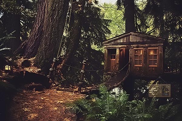 خانه درختی سبک آمریکایی